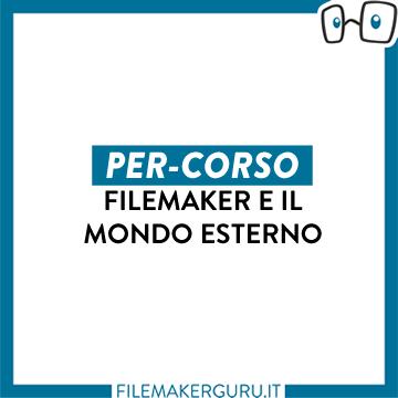 FILEMAKER E IL MONDO ESTERNO logo